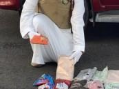 """شاهد … مكافحة المخدرات: القبض على مواطن بحوزته 292 كيلو """"حشيش"""""""