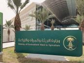 بدء تطبيق اللائحة التنفيذية لجودة الهواء بالسعودية: انتبهوا لـ11 مخالفة