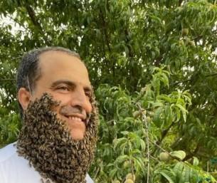 شاهد … نحال سعودي يجمع مئات النحل لتشكل لحية حول وجهه
