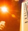 المركز الوطني للأرصاد: الأحساء تُسجّل الأعلى حرارة في المملكة