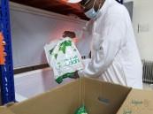 1080 أسرة تستفيد من مشروع الإفادة من لحوم الهدي والأضاحي (صور)