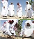 أمانة الأحساءتُطلق مبادرة تشجير المقابر