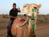 الإمارات تطلق أول مشروب مثلج لحليب النوق بطعم الفراولة..!