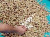 القبض على معاق بحوزته أكثر من 17 ألف حبة مخدرة