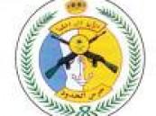 """حرس الحدود بجازان يقبض على """"80"""" بلاطة حشيش وأسلحة وذخيرة"""