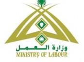 في محاولة لتنظيم وتوحيد جهود استقدام العمالة : السبت القادم لقاء موسع بمجلس الغرف لبحث نظام شركات الاستقدام  في المملكة .