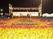 مهرجان ربيه زهور الدمام يستقبل زوار الشرقية  .