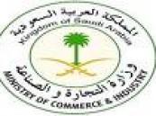 ( 4027 ) عدد السجلات التجارية للسيدات في المنطقة الشرقية و27 % منها لقطاع البيع بالجملة والتجزئة ..