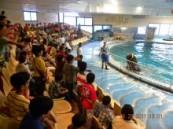 الدلافين بنادي أم الحمام ونادي القطيف يحتفي المتفوقين .
