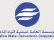 معالي محافظ المؤسسة العامة لتحلية المياه المالحة : التحلية ستتحول إلى كيان صناعي عملاق وفق برنامج زمني محدد  .
