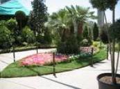 تقام على مرحلتين ..إعادة تأهيل الحدائق القديمة وإنشاء 12 ساحة وتركيب 65 لعبة أطفال في الإحساء ..