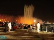 فعاليات مهرجان واحة الخير (فرحة حسانا ) تشهد حضور كثيف .. وتفاعل كبير مع عروض مسرح القرية الهجرية .
