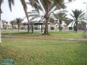 ( 33 ) حديقة و ( 3 ) أسواق جديدة جاري إنشاؤها في محافظة بقيق .