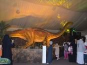 خيمة الديناصورات تشهد أقبالا لأكثر من ( 24000 ) زائر خلال يومين .