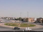 بلدية العيون تضع المسطلحات الخضراء الجمالية على شوارعها