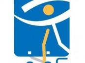 نادي الأحساء لذوي الأحتياجات الخاصه  يتأهل لنهائيات بطولة المملكه لكرة الهدف .