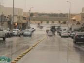 أمطار خفيفة إلى متوسطة تشهدها محافظة #الأحساء
