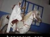 لأول مرة على مستوى دول الخليج : موضة جديدة … زفاف عريسين على حصان أبيض .