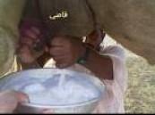 لكونه مغذي أكثر من حليب البقر … حليب النوق قريبا من الصحراء العربية إلى المتاجر الأوربية .