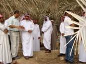 وكيل وزارة الزراعة يتفقد برنامج مكافحة سوسة النخيل
