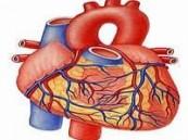 حرم خادم الحرمين الشريفين ترعى ندوة أمراض القلب عند النساء .