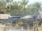 الدفاع المدني بالأحساء يسيطر على حريق نشب في حشائش بأرض زراعيه .