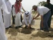 دشنه  الدكتور الساعاتي  يوم أمس : جامعة الدمام تشارك في أسبوع الشجرة .