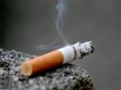"""تحت شعار"""" جامعة بلا تدخين """" جامعة الملك فيصل تنظم معرضا توعوي عن أضرار التدخين والتي وصلت نسبة 40% بين منسوبي الجامعة"""