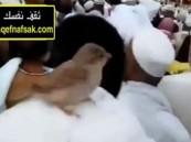 شاهد.. عصفور يستقر على رأس حاج ويطوف معه بالمسجد الحرام