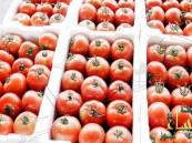 """سعوديون يواجهون أرتفاع سعر الطماطم بحملة """"خلها تخيس"""""""