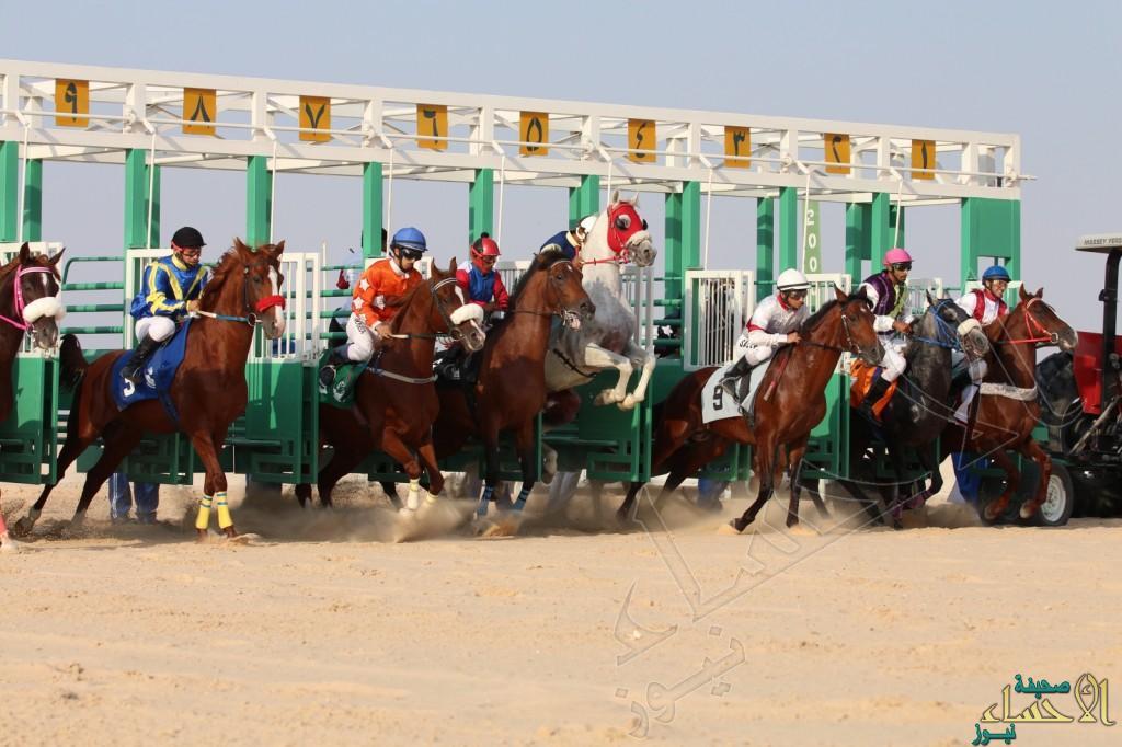 بالصور … الجواد ثنوي يفوز بكأس دعم غسان العقارية لحفل السباق الثالث