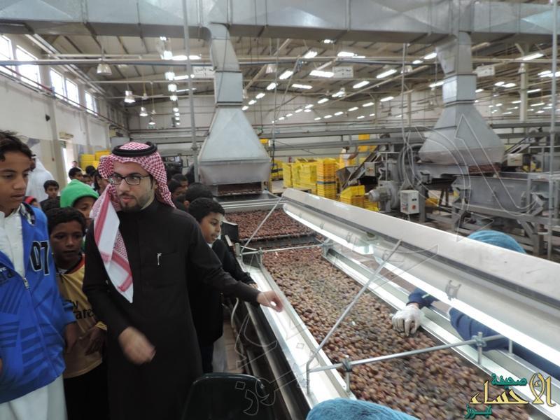 طلبة أحمد بن حنبل يزورون مصنع التمور في الأحساء صحيفة الأحساء نيوز