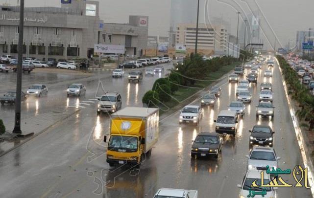 """توقعات بهطول أمطار رعدية مصحوبة برياح نشطة على """"الشرقية"""""""