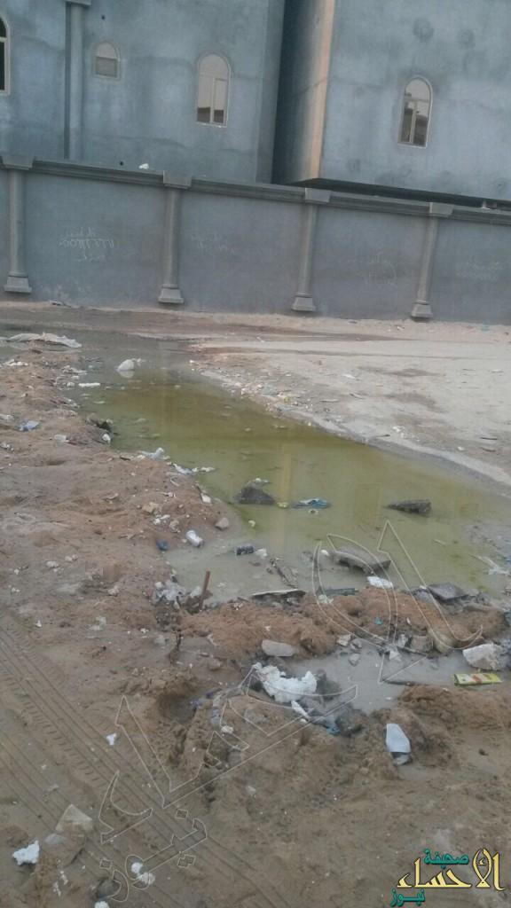 """بالصور… مياه المجاري تغمر حي""""العزيزية"""".. ومواطن: فوجئت بابني يسبح فيها"""