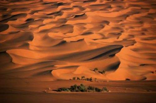 وفاة مواطن شاب تركه زملاؤه بالصحراء!