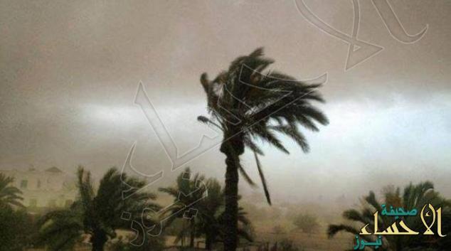 طقس الأحد.. أمطار رعدية مصحوبة برياح نشطة على بعض المناطق