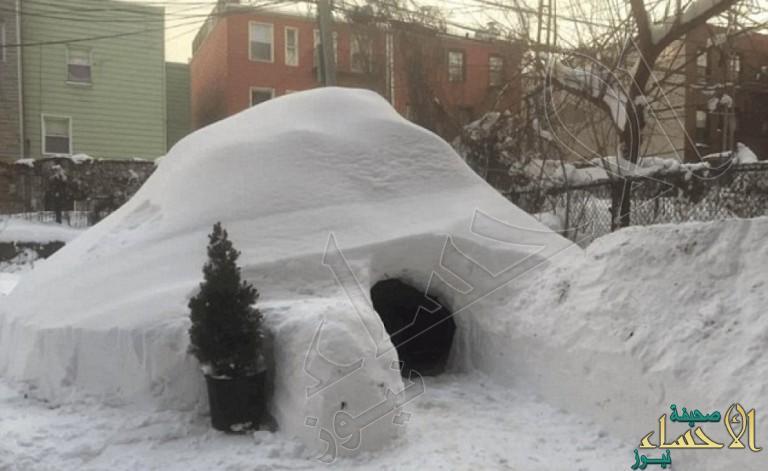 بالصور.. أمريكي يبني قبة جليدية في حديقته ويؤجرها بـ 200 دولار في الليلة !!