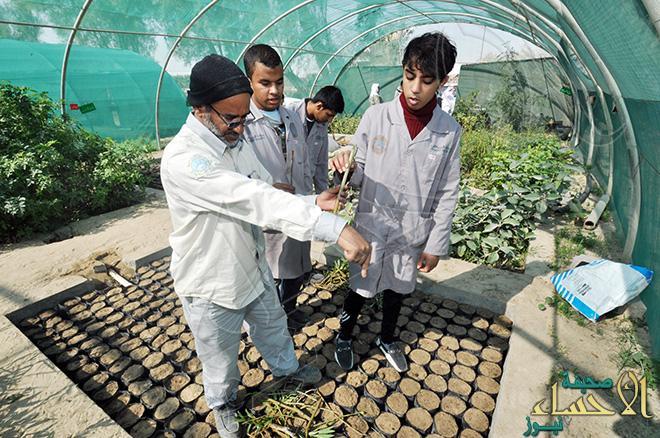 جمعية ذوي الإعاقة بالأحساء تطلق برنامج التدريب الزراعي الــ5