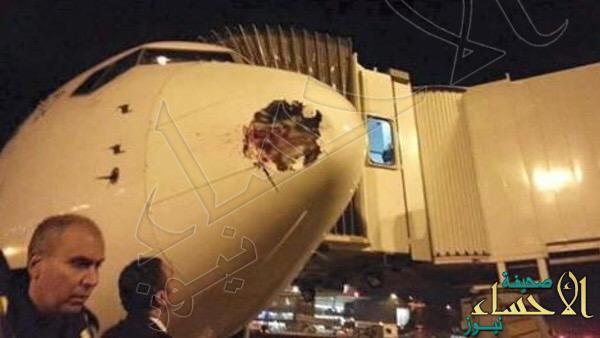 طائر عملاق كاد يسقط طائرة مصرية بركابها في لندن