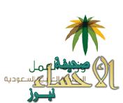 فصل 12 سعودياً طالبوا وكيل وزارة الإسكان بالتثبيت بوظائفهم