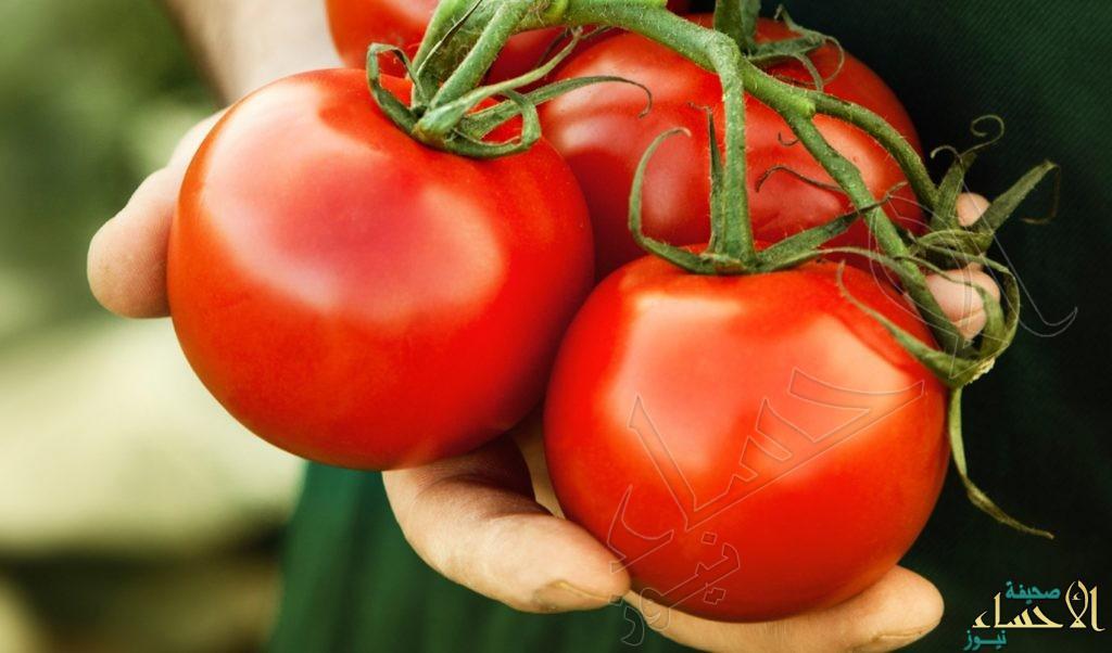 هذه الأطعمة تمنع نمو الخلايا السرطانية.. أبرزها الطماطم والشيكولاتة الداكنة