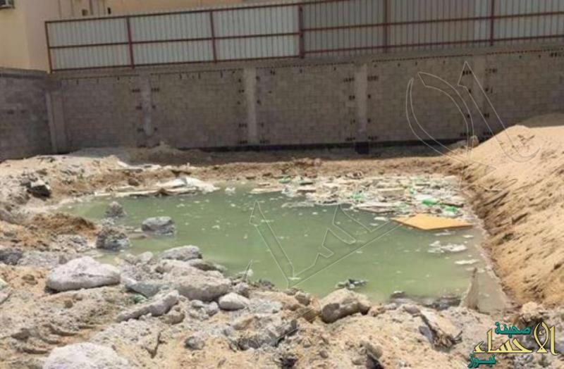 في ضاحية المستنقعات بـ #الدمام .. مصرع طفل غرقاً ووالدته تكتشف جثته بالصدفة !