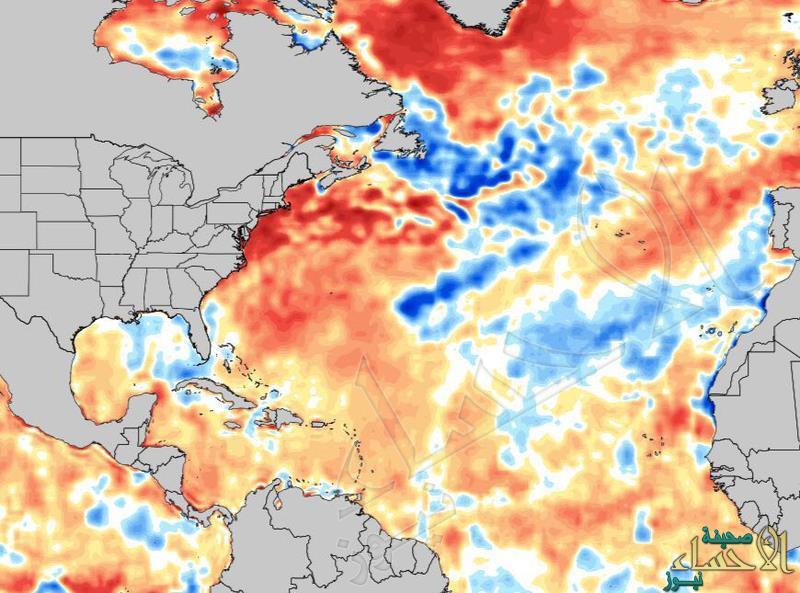 محلل طقس: موجة أمطار ستشهدها الجزيرة العربية لم تتكرر منذ 21 عاماً