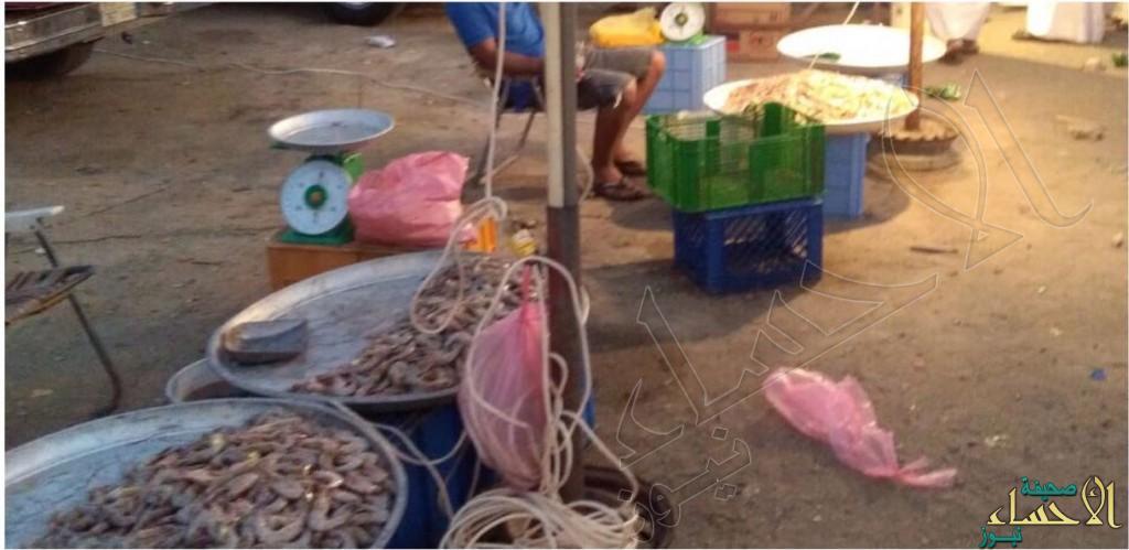 بالصور.. مداهمات ليلية لباعة السمك الجائلين في #الأحساء