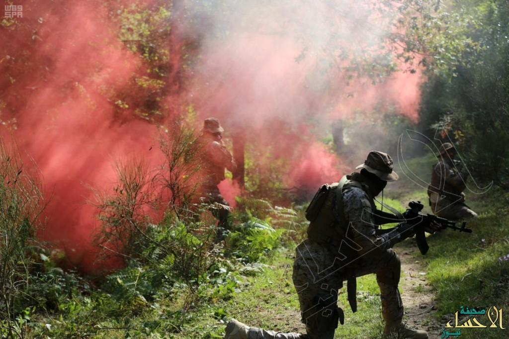 بالصور.. القوات البرية الملكية تُنفِّذ تمريناً مشتركاً مع القوات الفرنسية