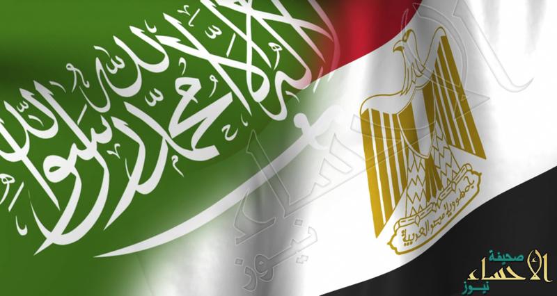 أنباءٌ عن زيارة وفد مصري رفيع المستوى للسعودية .. خلال أيام