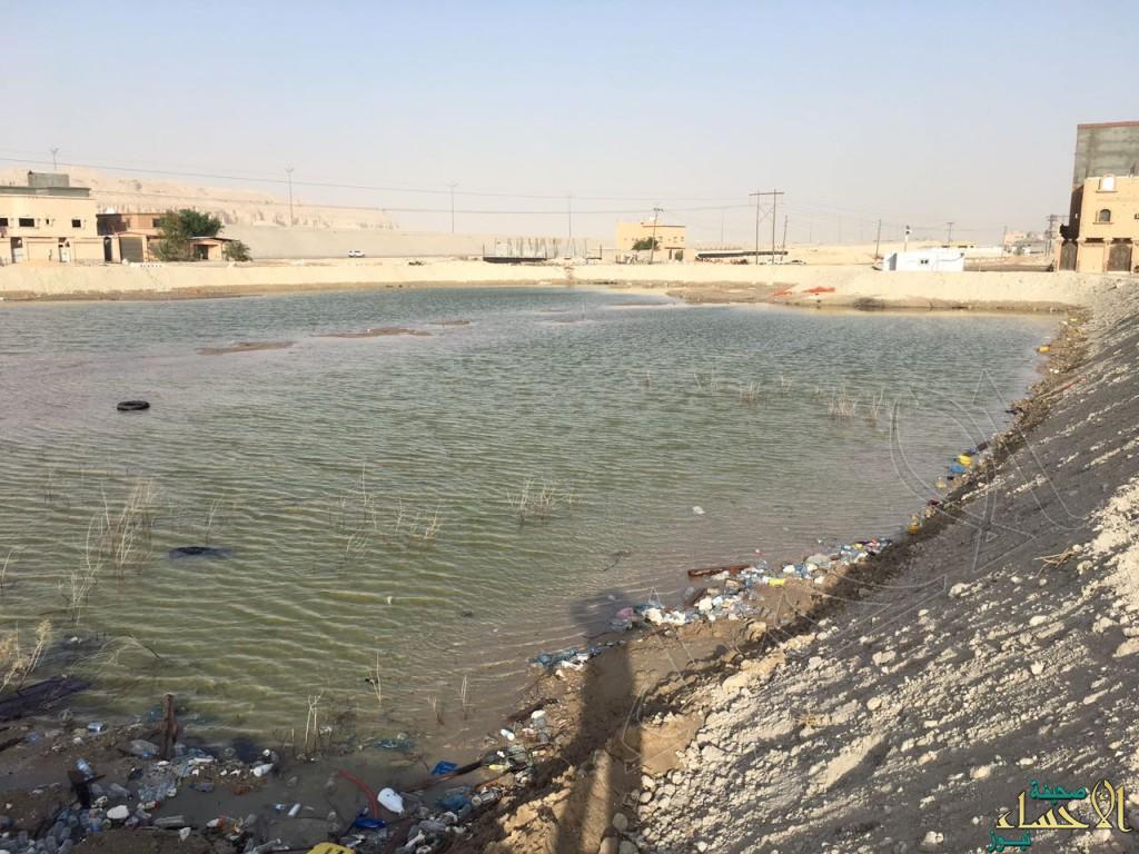 بالصور.. مقاول في الأحساء يُحول مشروع لمستنقع مائي والأهالي يتذمرون !!
