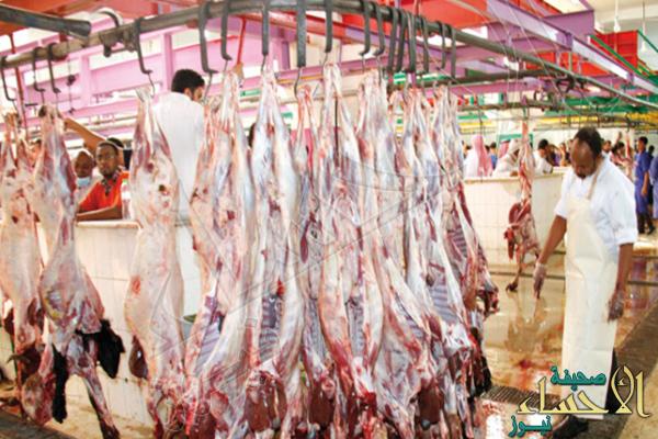 """رغم تراجع أثمان الماشية.. تدشين حملة لـ""""مقاطعة الملاحم"""" ضد ارتفاع الأسعار"""