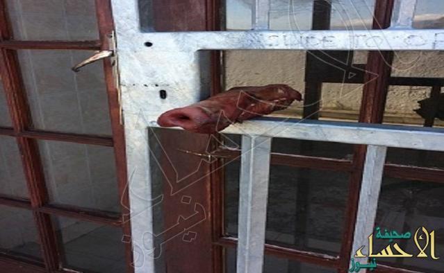 لماذا وضع أنف خنزير عند مسجد في جنوب إفريقيا !؟