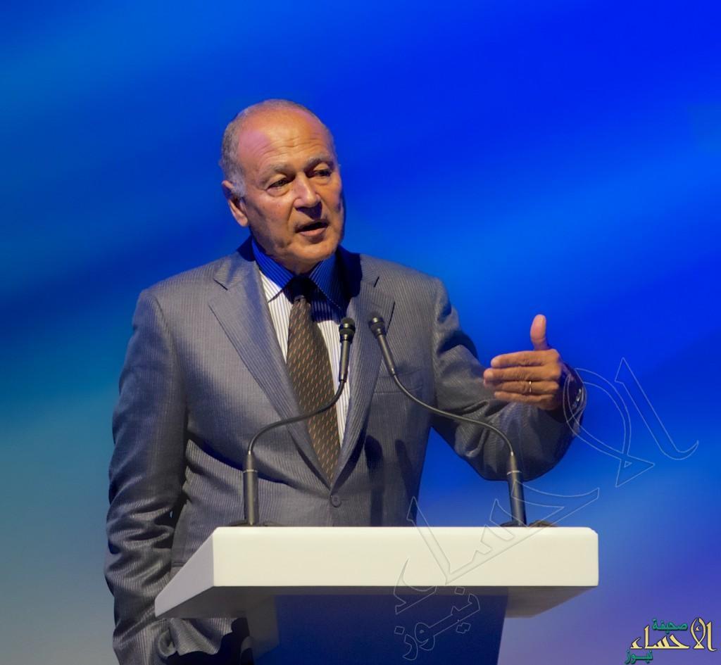 """الجامعة العربية: """"الدولتان"""" الحل الوحيد لقضية فلسطين"""